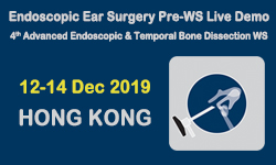 endoscopic-ear-surgery-pre-workshop-live-demonstration